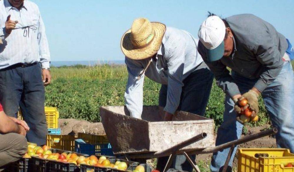 Los trabajadores rurales tendrán bono de fin de año