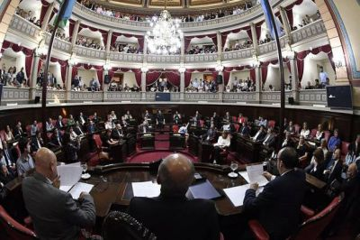 Los diputados Santiago Passaglia y Lisandro Bonelli asumieron ayer en sus bancas de la Cámara Baja