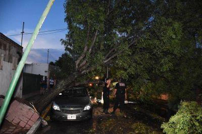 El Gobierno trabaja para asistir a los vecinos afectados por el temporal