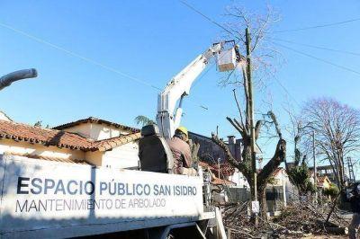 San Isidro: con poda sustentable reutilizaron ramas de 40 mil árboles