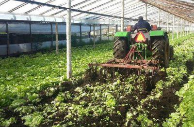 Realizaron múltiples allanamientos por contaminación de agroquímicos