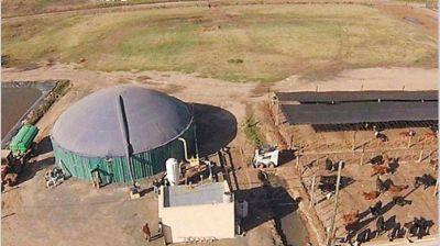 Invierten u$s 13 millones en una planta para producir biogás en Pergamino