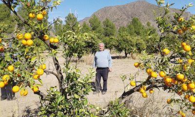 Naranjas dulces para un Luján que quiere renacer