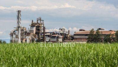 Negociaciones contrarreloj por la crisis del ingenio San Isidro