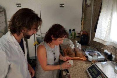 Investigador chubutense desarrolla planta piloto de hongos comestibles a partir de residuos recuperados
