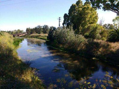 Mal olor en el arroyo Del Medio: piden al frigorífico readecuar planta de efluentes