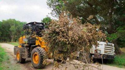 El Emsur recolectó más de 600 toneladas de residuos en barrios de la ciudad