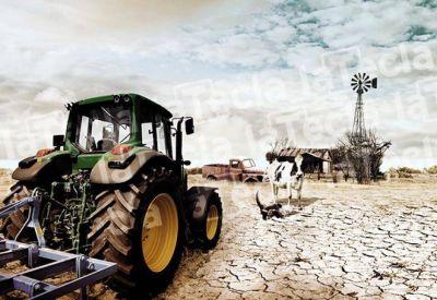El drama rural ante la falta de agua