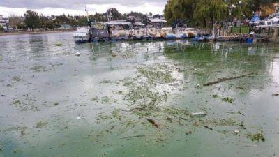 Desechos cloacales, basura y detergentes, la contaminación del lago San Roque
