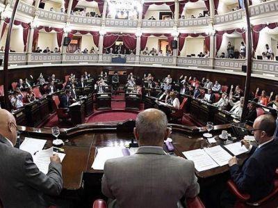 Franco Bagnato y Lucas Fiorini presidirán comisiones en la Cámara de Senadores