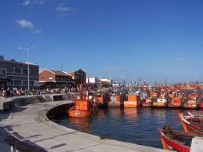 Puerto Mar del Plata recibe nuevos terrenos para mejorar su operatoria