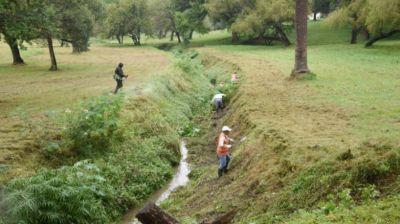 Parque Guillermina: la Municipalidad retiró 200.000 kilos de basura