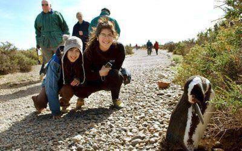 Das Neves inaugura la temporada de pingüinos
