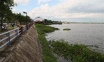 Río Paraguay: un espejo de agua cubierto de camalotes y la basura