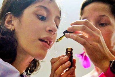 Cannabis medicinal: avanza un estudio en el Garrahan y analizan un predio para cultivar