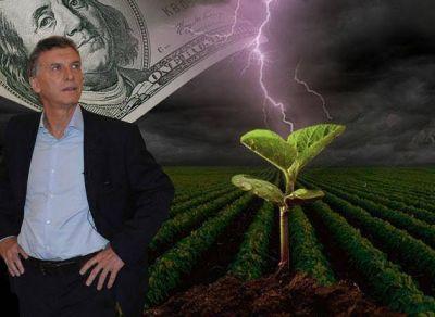 Vuelve el canuto a la soja: Carrió habló con el corazón, pero el campo mira al dólar y le responde con el bolsillo