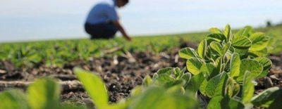 Piden a Vidal que vete ley de creación de un colegio de ingenieros agrónomos