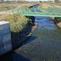 Prefectura detectó grave contaminación del río Limay