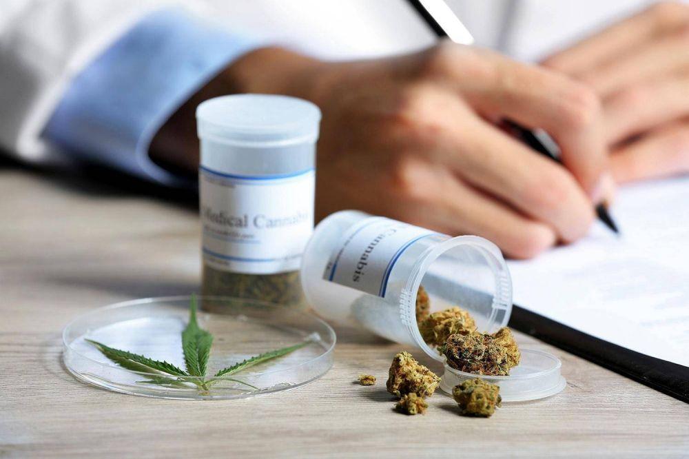 Conflicto por una ONG que trabaja para fabricar cannabis medicinal