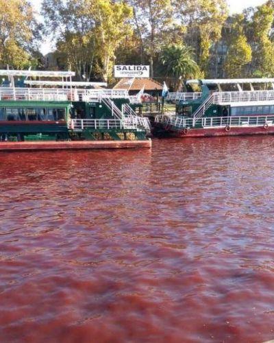 Porqué el agua se puso roja en Tigre: se espera por la respuesta de Provincia