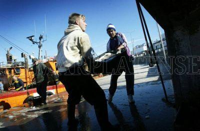 """Crisis pesquera: """"Si el langostino viene por tierra, quedamos afuera"""""""