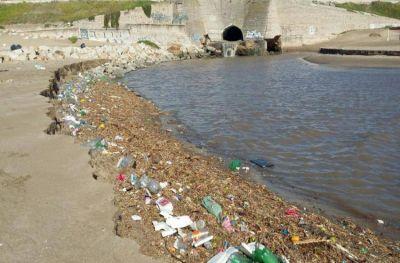 Aseguran que cada vez hay más fauna afectada por la basura en el mar