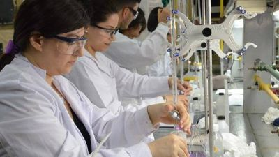 Solo el 21% de los alumnos de las carreras de ingeniería se recibe a tiempo: presentaron un plan para que haya más graduados
