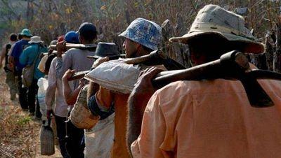 Tras el hallazgo de trabajo esclavo en el Parque Pereyra el SATHA advierte que