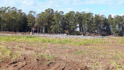 100 toneladas de residuos recibe diariamente el Relleno Sanitario
