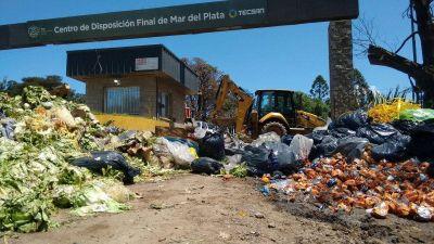 CEAMSE calcula que en 5 meses el predio de residuos estará en condiciones operativas para funcionar perfectamente