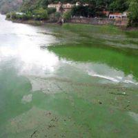 Proponen la creación de un Fondo Municipal para el saneamiento del lago San Roque