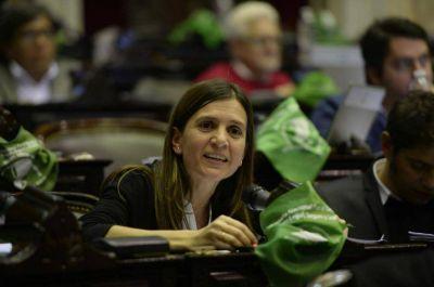 Aborto legal: lo que dijeron en el recinto los diputados marplatenses