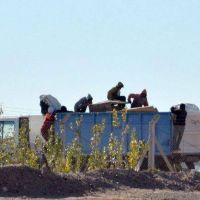 La basura afuera: Plottier la trae desde hoy al CAN