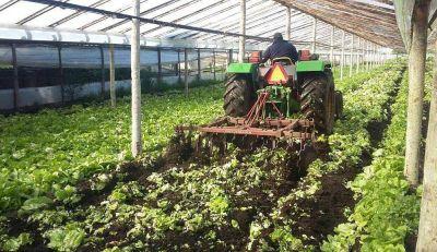 La Sociedad Rural local, en alerta: denuncian subas de tasas del 400%
