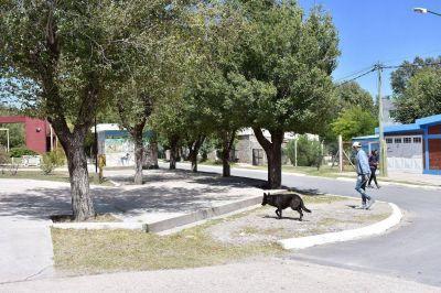 San José del Morro ya tiene red cloacal: beneficiará a 150 vecinos