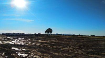 Erradicación del basural a cielo abierto en Cabildo