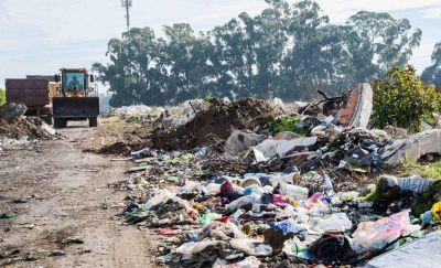 Levantaron 210 toneladas de basura y desmalezaron banquinas en la avenida 10 de Febrero
