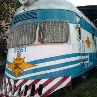 Senadora pide por Ley que vuelva el tren que une Misiones con Buenos Aires