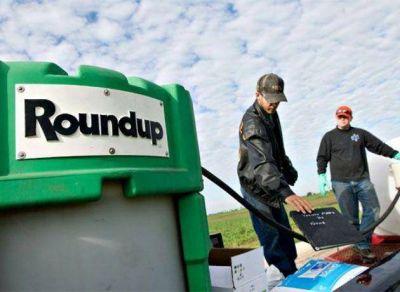 Festejan Bayer y Monsanto: el Gobierno desoye recomendaciones sanitarias y apuesta por un modelo agropecuario de mayor uso de agrotóxicos