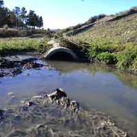 Contaminación: Pilcaniyeu tira líquidos cloacales sin tratar al campo