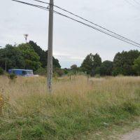 Arroyo ordena convertir los terrenos baldíos en huertas