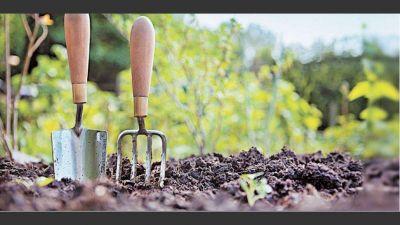 El futuro alimentario en la agenda de sustentabilidad