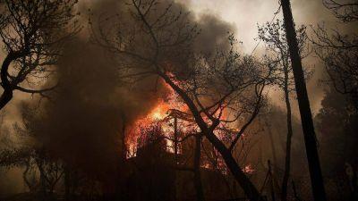 """El dolor del Papa por las víctimas de los incendios en Grecia: """"una tragedia"""""""