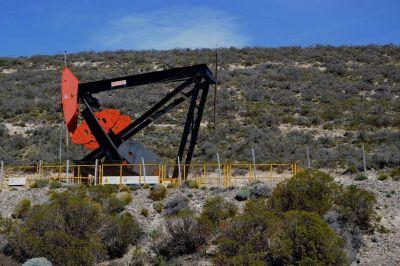 Capex invertirá US$ 130 millones en Chubut