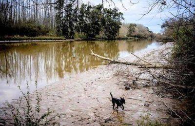 En Campana el río recuperó valores normales
