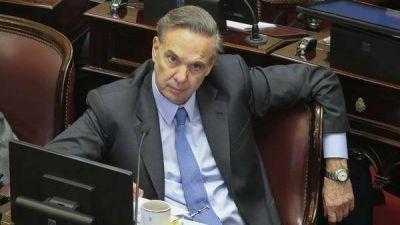 Miguel Pichetto aseguró que quiere ser candidato a presidente: