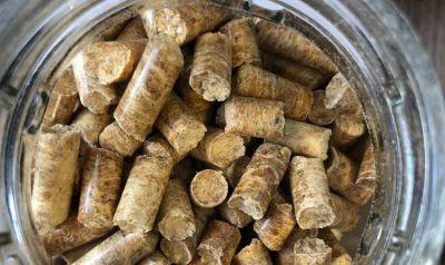 Opción ecológica y económica: Promueven el uso de pellets para calefacción en Estaciones de Servicio
