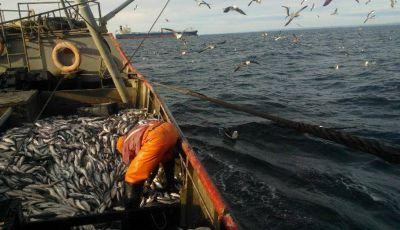 Pesca: en su cuarta jornada de paro, el SOMU ya logró acuerdos
