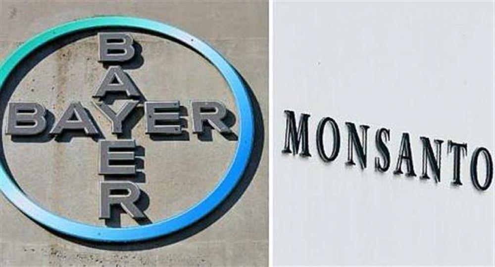 Acciones de Bayer cayeron casi 11% por fallo millonario contra Monsanto