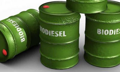 "Alertan sobre una ""tormenta perfecta"" para el biodiesel"